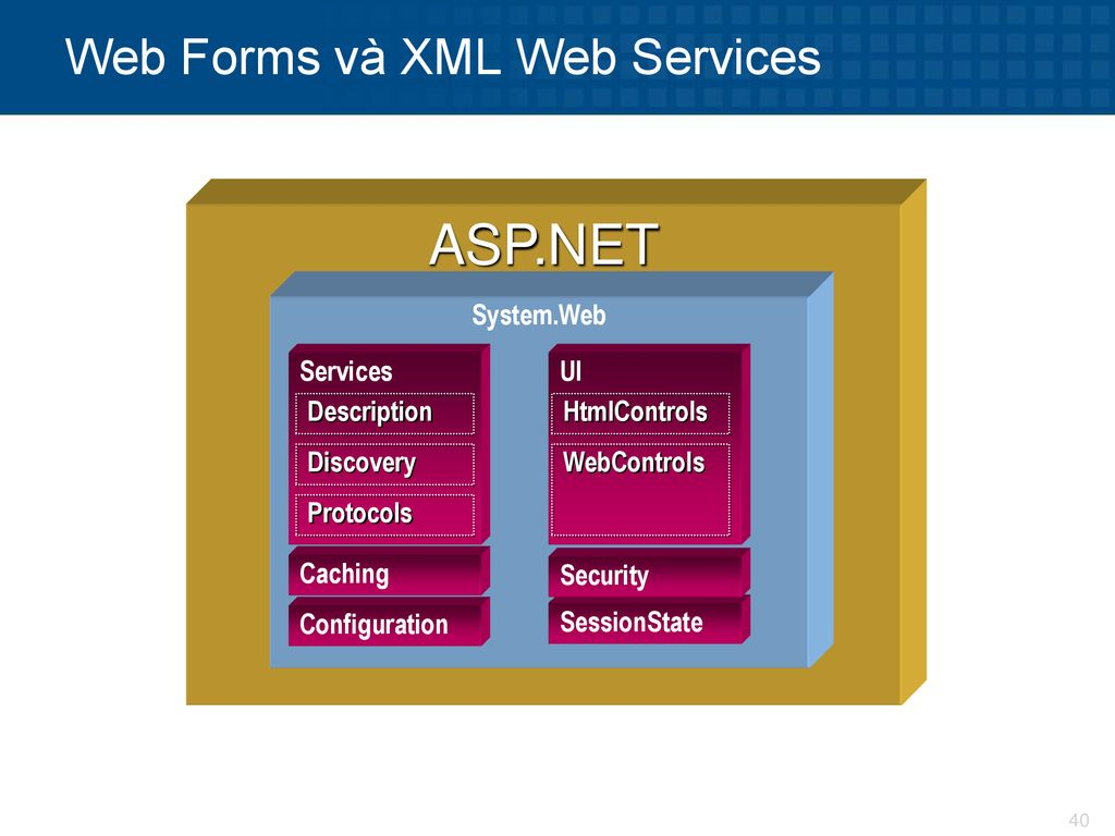 Web Forms và XML Web Services